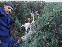 Vagues...La chasse à Skikda (19)