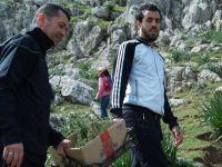 Vagues... Les Randonneurs de Skikda :Plantation du Cèdre   au Mont Sidi Driss (65 )