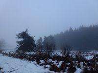 Il y avait du brouillard...
