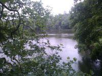 la ferme du Piqueur , les étangs de Villeneuve , le mémorial américain