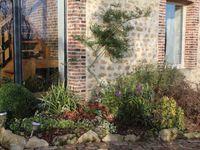 Le massif de la baie vitrée a été largement revisité. J'supprime  les fleurs d'été qui souffrent du chaud et  je met des persistants pour équiibré le massif surtout en hiver. Je vais remettre quelques véronique hébé que j'apprécie bien . Sur la terrasse le camélias sassanqua est en pleine fleur  .