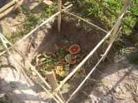 Le jardin potager dynamisé