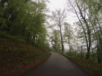 Route des Vins d'Alsace, Kaysersberg