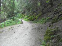 Les petits ruisseau accompagnent le long du chemin