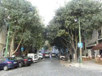 Abords de l'Avenue sur sa partie sud est