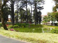 Jardim do Carregal ou Jardin Carrilho Videira