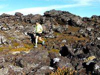 Rando Trail : Pico des Açores 2351 m