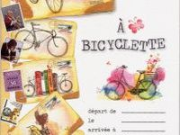 Carnets Piccolia : une collection intemporelle