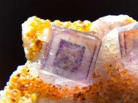 Fluorite (Fluorine) from Okorusu, Namibie (size: Cabinet)