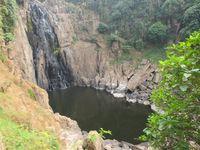 Forêt et cascades