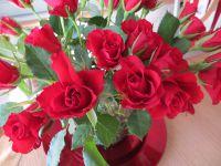 Roses du Jour J-2