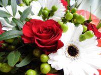 Mes fleurs de ce matin ...