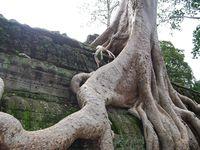 Angkor redécouvert, Samedi 25 juillet 2015, sur ARTE