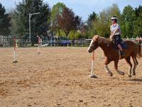 Championnat académique UNSS d'équitation