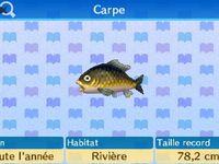 Les poissons (canne-à-pêche)