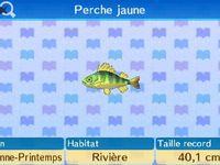 Listes des poissons/insectes/plantes aquatiques en automne :