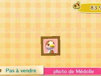 http://animalcrossing-3ds.over-blog.com/2015/10/les-photos-des-residents.html