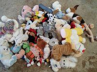 Les dons déchargés au refuge de Cambiando Miradas