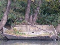 La Vire Vire de Châteauneuf-du-Rhône.(Drôme 26)