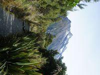Et c'est parti pour 3h de randonnée sur Routeburn Track pour arrivée jusqu'au Key Summit! De là haut se trouve un aperçu en 360° des montagnes du fiordland! Juste incroyablement beau! :)
