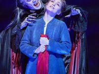 [Spectacle] Le Bal des Vampires, un spectacle fascinant et sang pour sang mordant