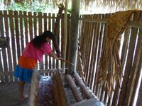Tortas de manioc