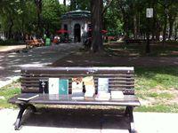 Dans le Mile-End, dans la ruelle Demers ou encore sur un banc du Square Saint-Louis... de nombreux points invitent à la lecture et à l'évasion.