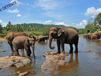 Différents sites visités au SRI-LANKA
