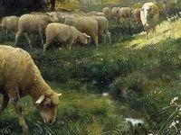 Mon infusion pastorale (ou la légèreté rafraîchissante d'une prairie de Normandie)