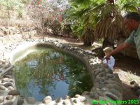 Ethiopie 3 - de la capitale du café à la capitale de l'Ethiopie