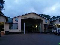 Arrivée à la réserve du Ngorongoro - Avant d'être dans le cratère, le spectacle est déjà impressionnant!