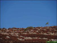 Brandberg - Montagne de feu - Des couleurs irréelles