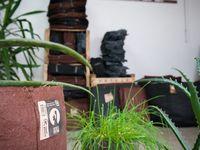 Terralba décore vos évènements : salons, festivals, boutiques...