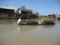 Lac Inle, Les Inthas, Cheroots, Etat Shan, Nyaung Shwe, Birmanie