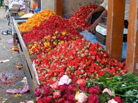 Biryani aux légumes (Inde)