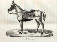 """Harnais en  paire, selle de voyage, selle orientale, selle de gala réalisés en 1892 par """"Camille jeune"""""""
