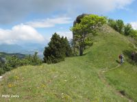 Le long des crêtes sous le Mont Pellat avec, au fond, un aperçu du lac du Bourget.