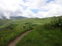 En traversée dans la verdure, un passage de torrent et l'approche du col de Very.