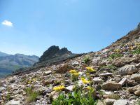Le chalet du Petit Mont-Blanc. Depuis le col le paysage est plus minéral. L'Aiguille des Glaciers se reflète dans le lac de Mya bordé de linaigrettes et d'où l'on peut voir le col des Fours..