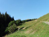 Les prairies de l'Aulp avec, en haut, le chalet d'alpage. Du chemin on peut voir la Lanche et, par temps clair, les hauteurs du lac d'Annecy.