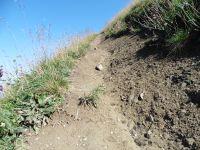 Le versant nod-est laisse apparaître des strates caillouteuses tandis qu'au sud-est le sentier serpente sur une pente herbeuse. Du sommet s'étire l'arête de la Sambuy.