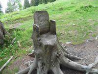 Un siège astucieux taillé dans une souche invite au repos avant d'arriver au refuge du Crêt du Poulet.