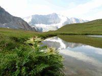 En passant sous l'Aiguille Noire on longe le lac du Grand Plan puis un autre face à la Grande Casse.
