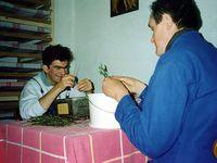 Jean-Christophe et Patrick au tri et à la mise en sachet des tisanes - Compagnons à l'efflorage du sureau et à l'effeuillage du tilleul...  -