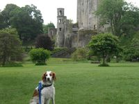 Irish's Holidays - 3rd day - Blarney Castle, County Cork