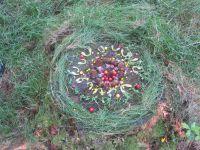 les réalisations de land-art d'élèves d'un collège pyrénéen