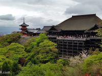 Compte-rendu du voyage aïkido au Japon printemps 2016