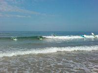 Les surfeurs de Siouville