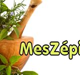 Bon de réduction février 2015 chez MesZépices.com .