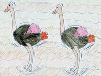 An army of Ostriches...by Sophie &amp&#x3B; Julienne (5°4)
